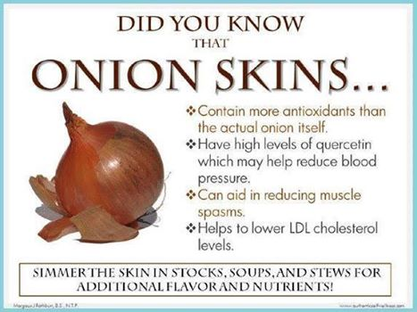 OnionSkins